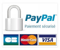 Payapl securises